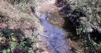 Hồ nước, nơi phát hiện ra thi thể ông Hùng