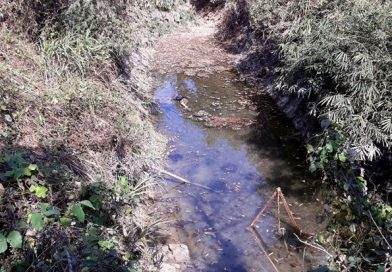 Nóng: Phát hiện thi thể người đàn ông chết bất thường dưới hồ nước