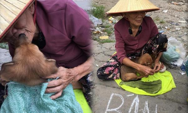 Hình ảnh cảm động về hình ảnh nụ hôn tạm biệt của cụ già và chú chó nhỏ