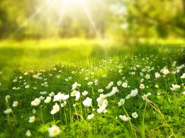 Mơ thấy nắng là điềm báo điều gì?